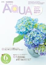 2013年6月号 vol.11